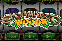 Game: Enchanted Woods