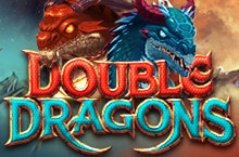 Game: Double Dragons